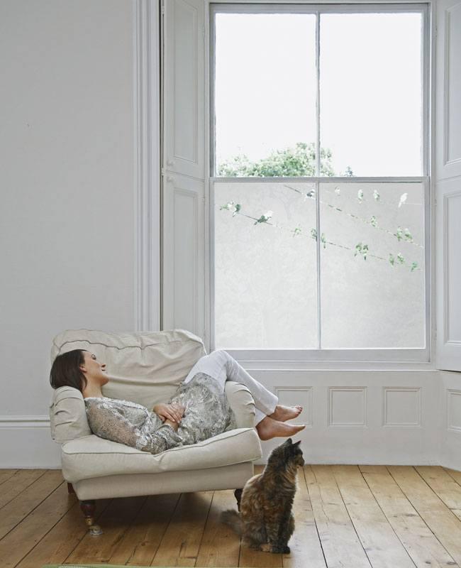 Window-Graphics-23